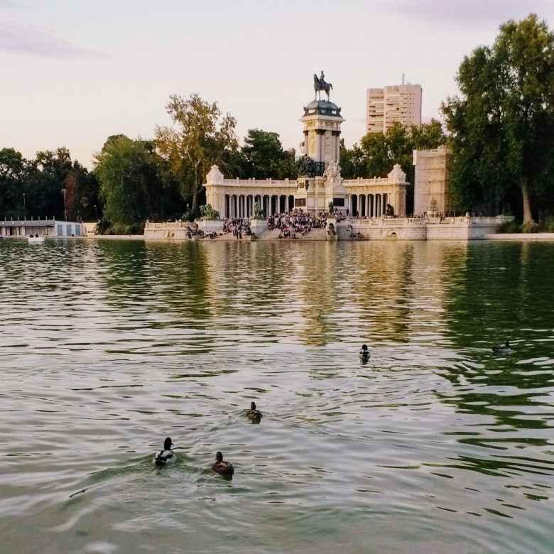Ducks in Estanque Grande (Big Pond) at Parque Retiro in Madrid.