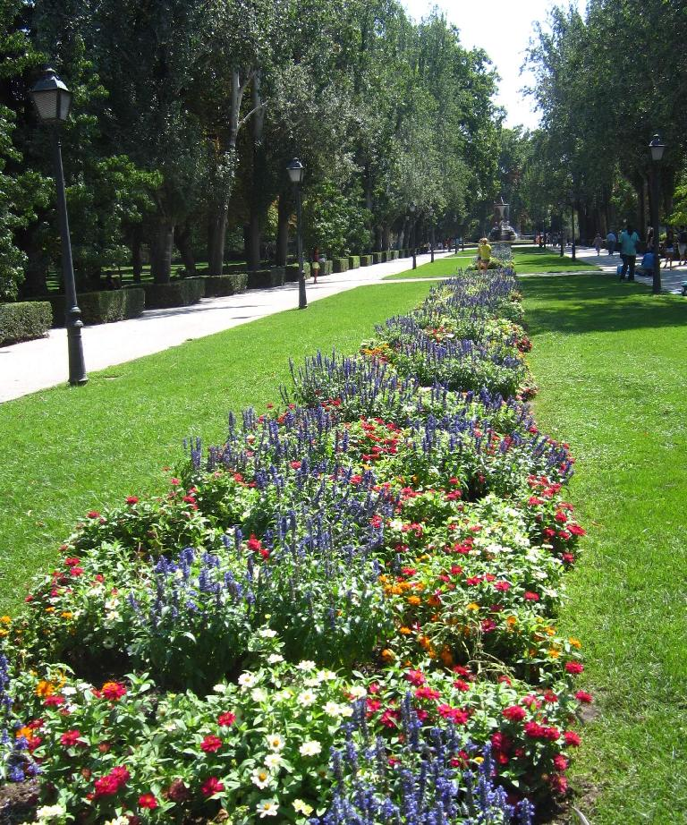 More flowers in el Parque del Retiro.