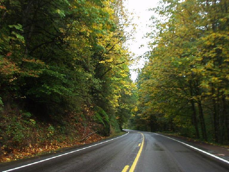 Hooray for more fall colors!  This stretch of Highway 126 in Oregon was super beautiful, reminding me a little bit of the stretch of US-550 from Ouray to Silverton in Colorado.