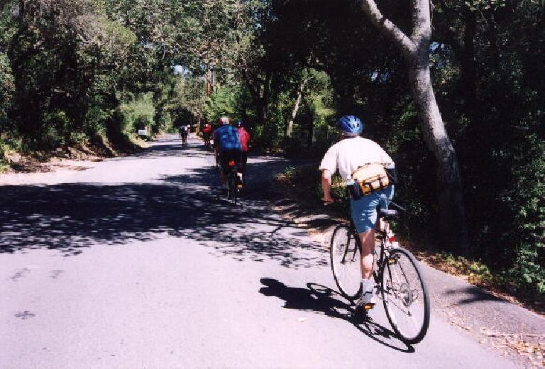 Old La Honda Rd. is 3 miles long and averages a 6-7% grade.  Here's Loren out of the saddle for a quick burst of speed going up.  He did admirably.