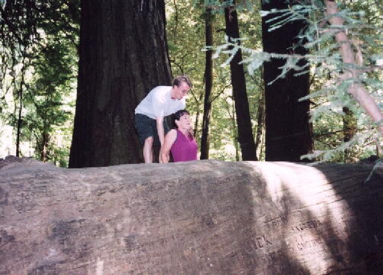 Woah!  Lisa is quite stuck!  Aaron tries to help her out.