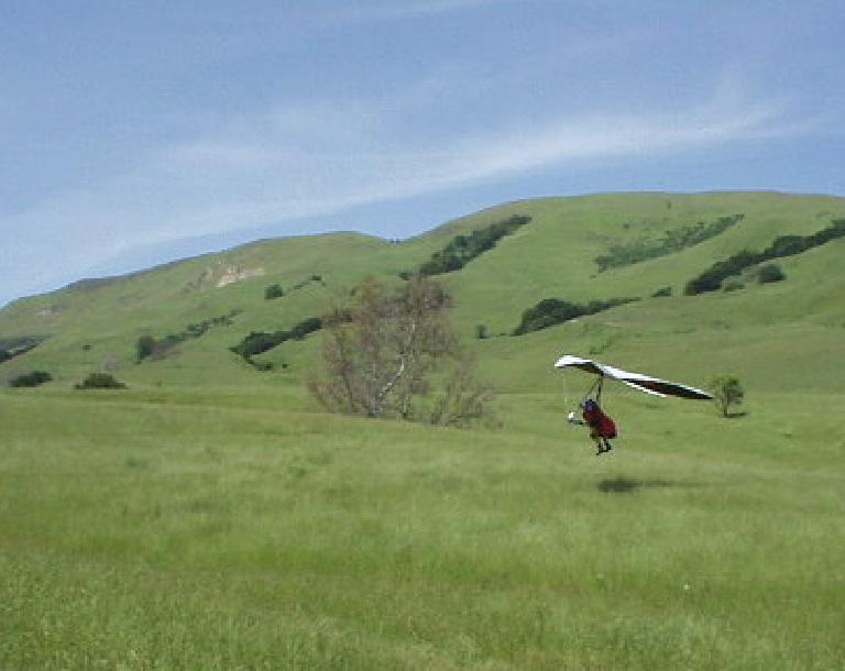The hangglider dude lands safely.  It was fascinating to watch.