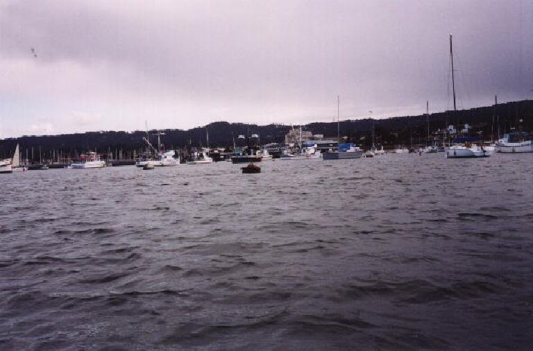 The boat harbor of Monterey.  A great day to be out on the water!
