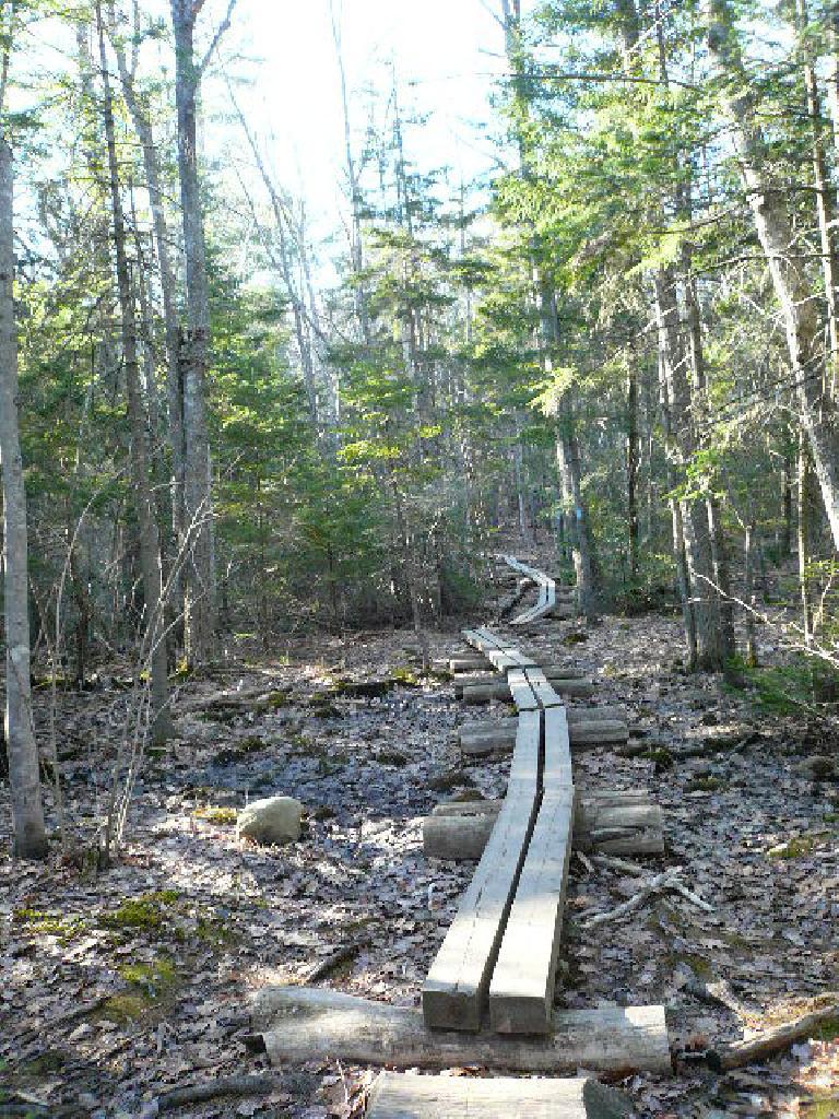 Wood path.