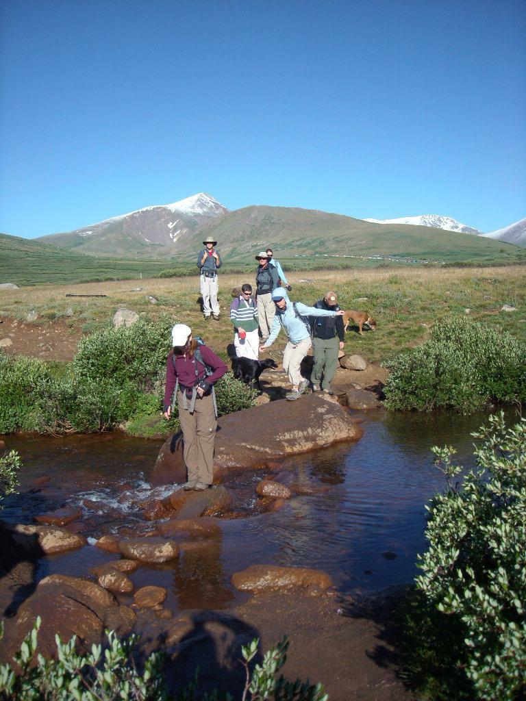 Tori crossing the stream.