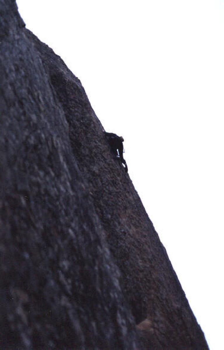 Tori lead climbing.