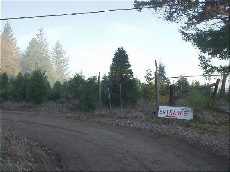 "The entrance of the Christmas tree farm.  When I explained to the tree seller that, no, I was not here to buy a tree but was a CA County Summit seeker, he joked, ""We are a TREE farm, not a tourist company!"""