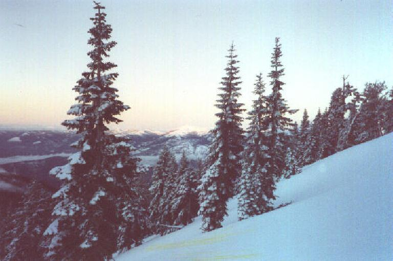 """Does this look steep?  It's actually a """"moderate"""" grade above 8000 feet along the Casaval Ridge route!  Note the pretty sunrise in the background. (March 25, 2001)"""