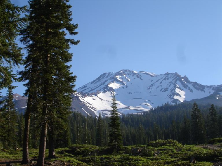 The view of Mt. Shasta from Bunny Flat.  Photo: Dave.
