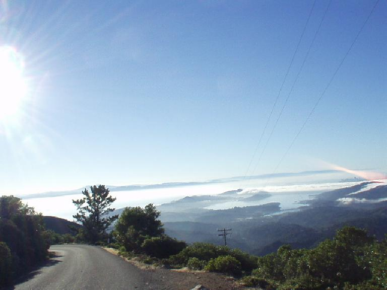 [Mile 36, 7:37am] Nearing the top of Mt. Tamalpais--the signature climb of the ride--one can see Mt. Diablo (the highest point in Contra Costa County behind the trees and The City (San Francisco) in the distance.