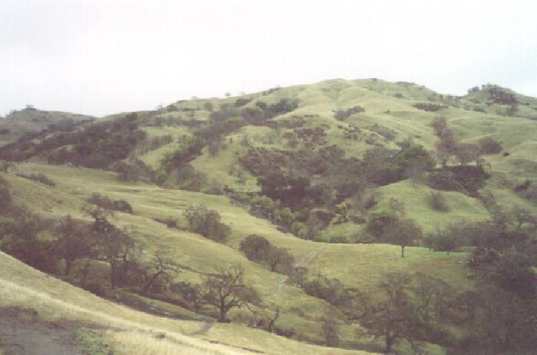 These are some of the green rolling foothills we will be climbing today.