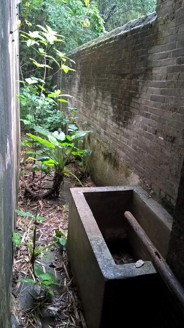 A water trough.  My dad would bathe outside this trough using the water in it.