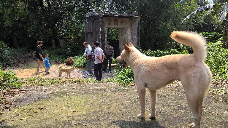A dog looks on as my dad gives a gift to villagers near his childhood home.