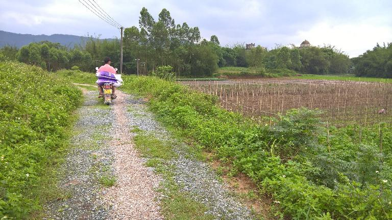 A villager carrying sacks of rice on a motorbike. In the distance is my dad's family's former five-story house and a neighboring house with dome roof.