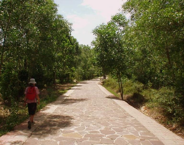 Walking 1.5 kilometers to the ruins at My Son.