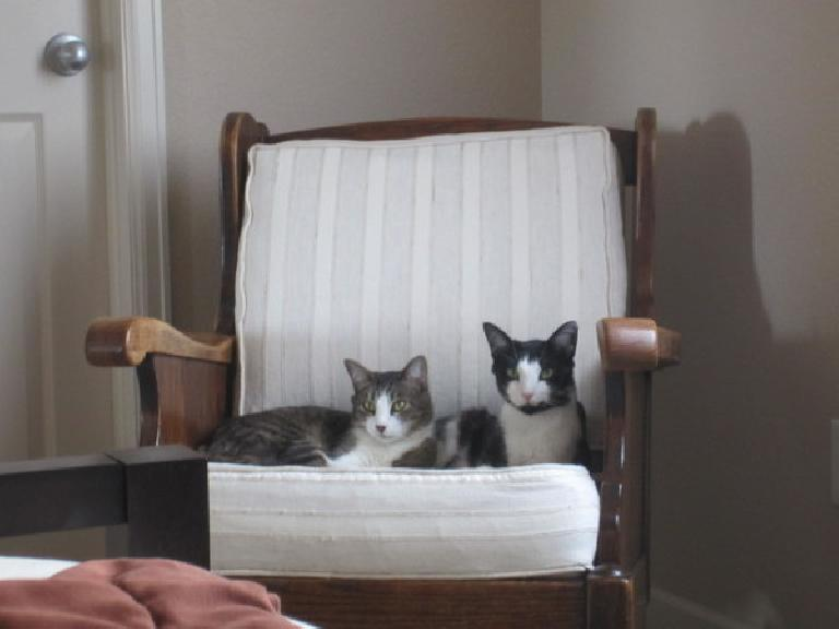 Before they moved, Dee gave me this chair her mother gave her 30 or 40 years ago.  It quickly became a favorite of my kitties Tiger and Oreo. (June 22, 2012)