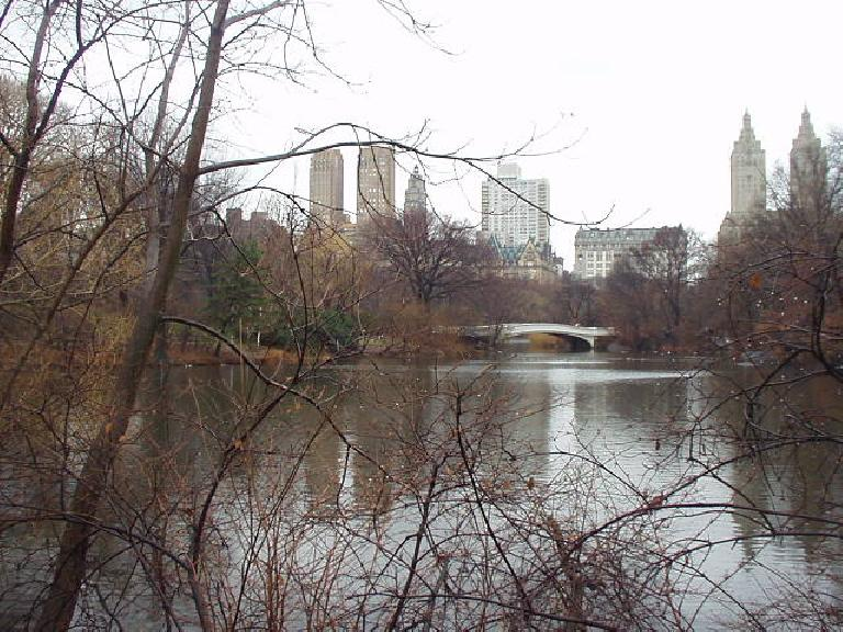 Bridge in Central Park.