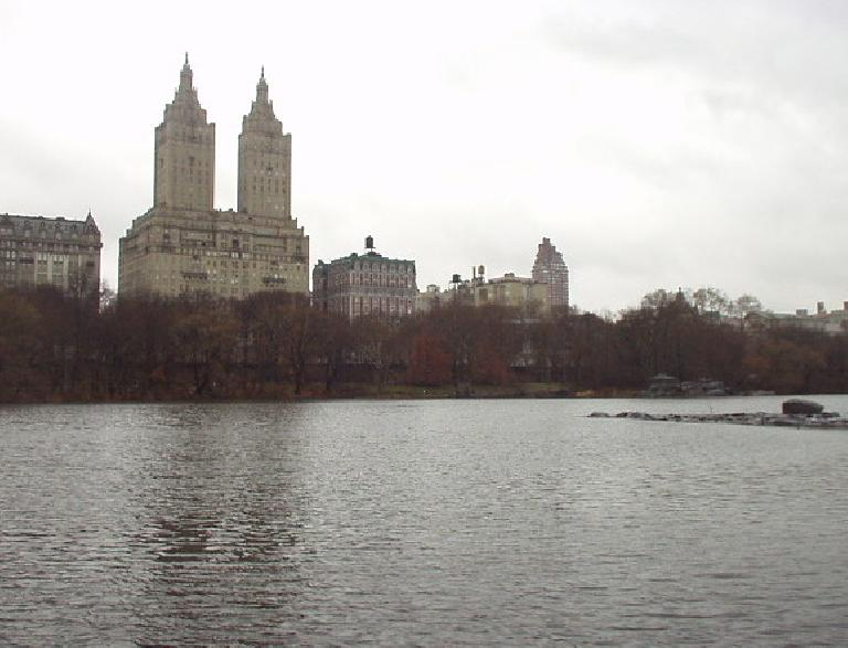 Buildings downtown overlooking Central Park.