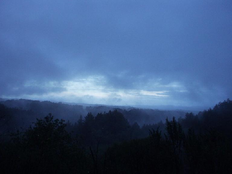 So despite stormy weather in the SF Bay Area, I woke up early to go for a run at the Oakland Hills, fully intending to do the Epiphany Ultra route.  The morning was pretty with the fog, rain, and trees.