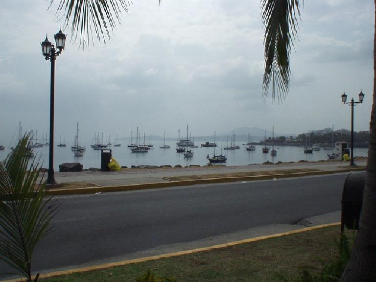 Sailboats in the harbor of the Flamenco Marina.