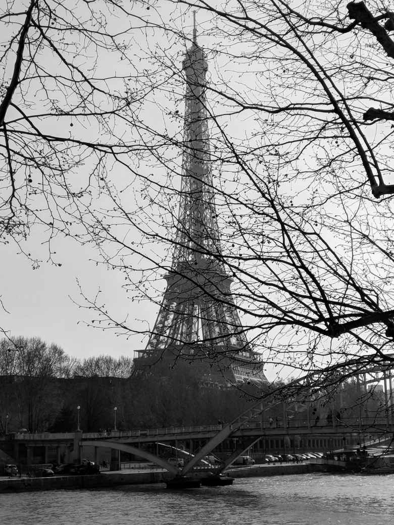 The Eiffel Tower behind some trees.