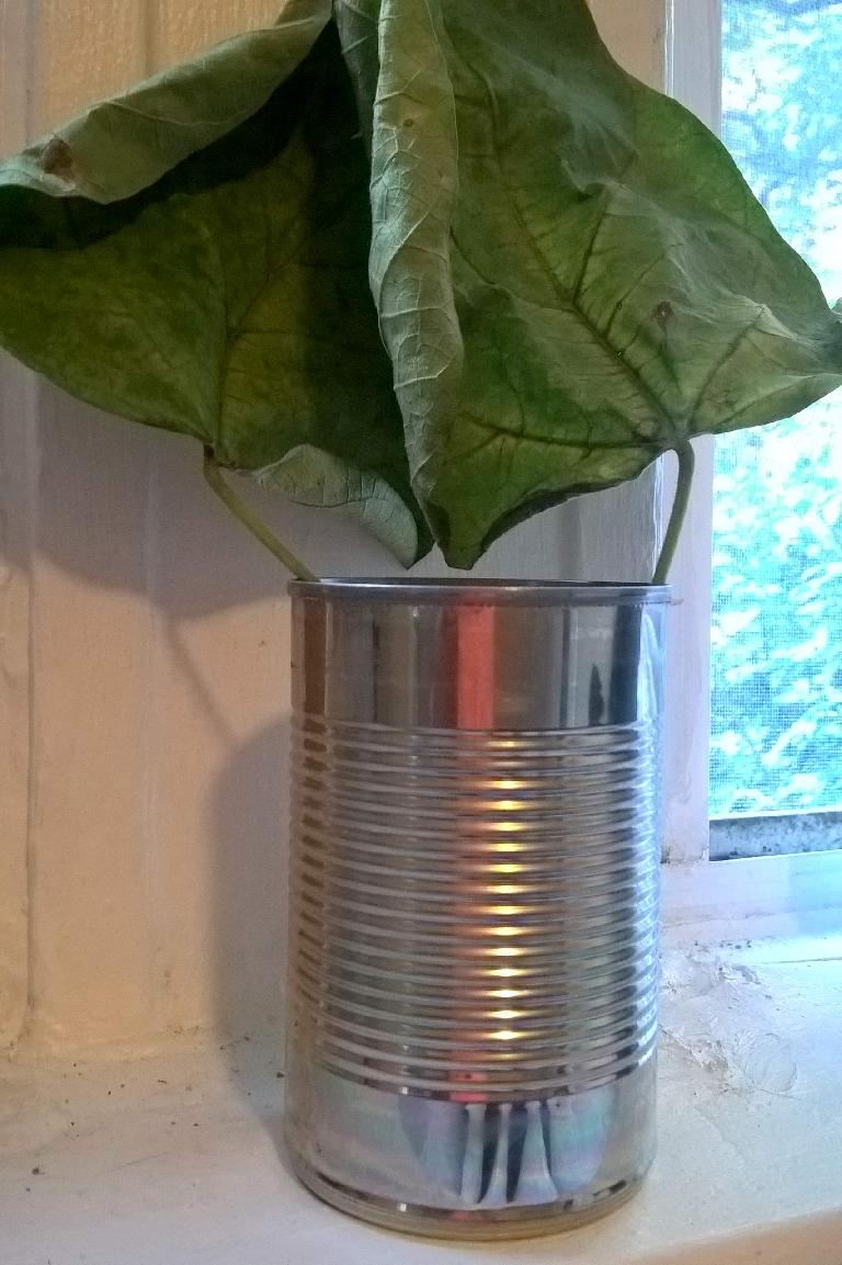 tin can of leaves