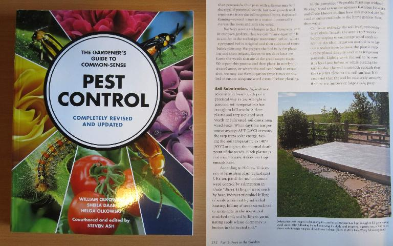 My garden as seen in a chapter about soil solarization in The Common Sense Guide to Pest Control.