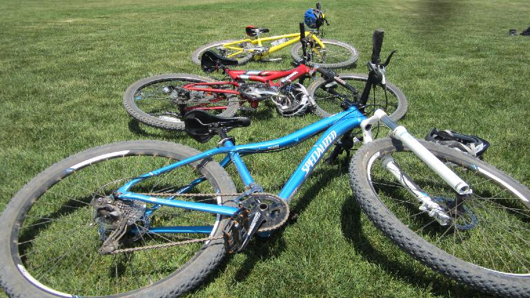 Our bikes in primary colors.