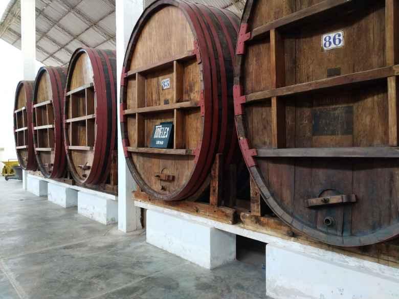 Wine barrels at the Tacama winery.