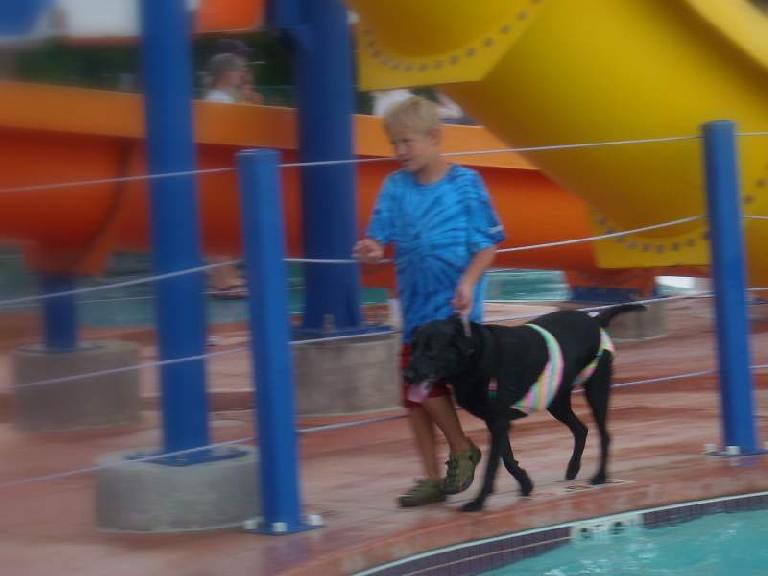 Thumbnail for Related: Pooch Plunge (2010)