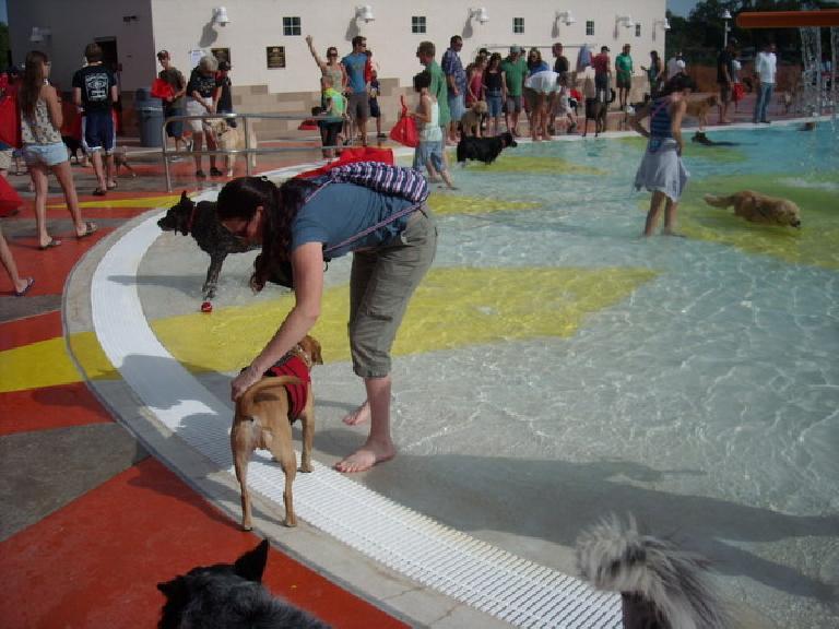 Tori trying to coax Sadiq into the water.