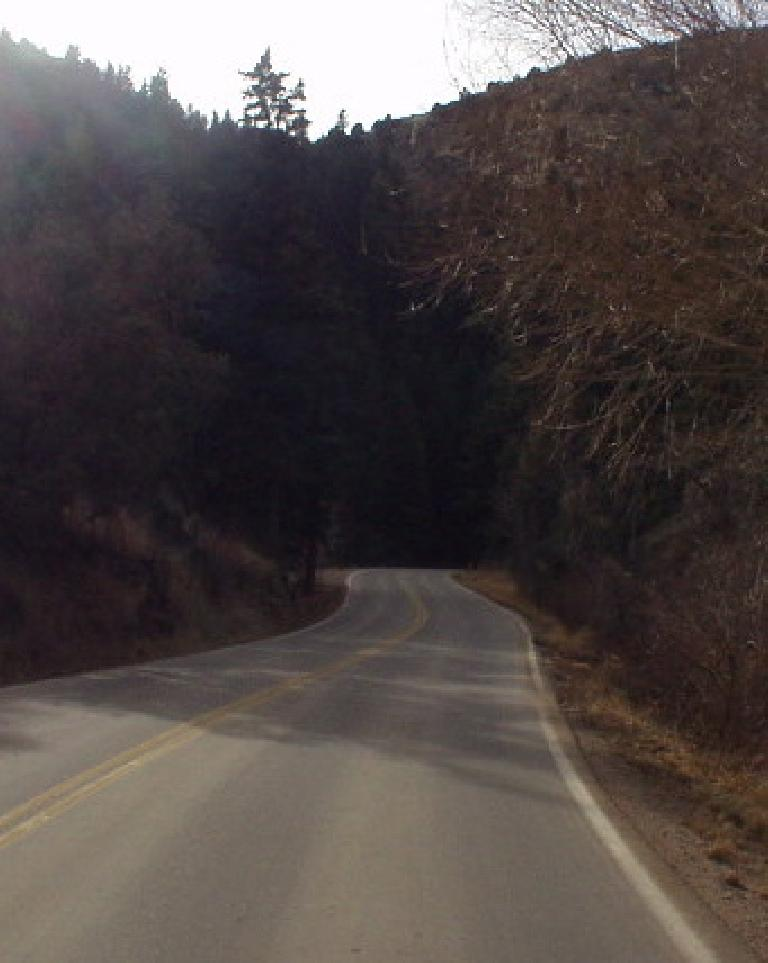 A variety of colorful trees frames the winding open road through the canyon.