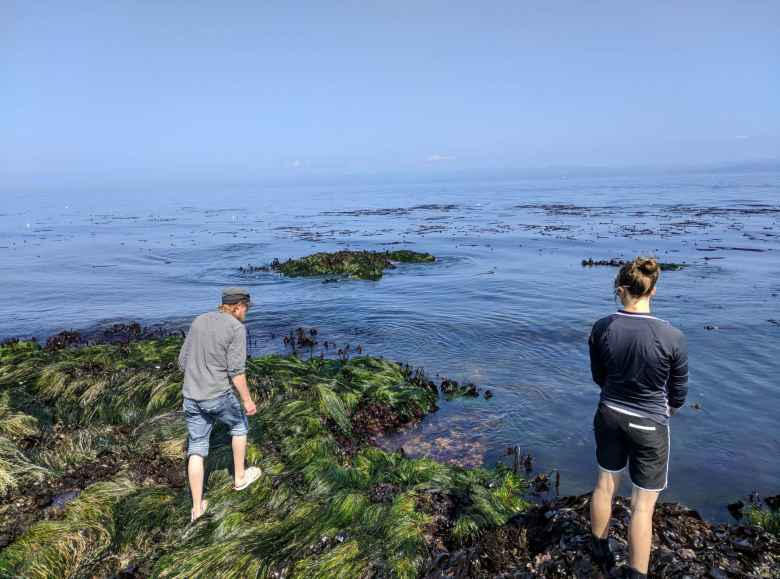 Russ and Erin looking for marine wildlife at Salt Creek County Park.