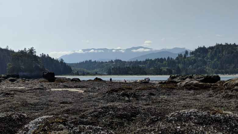 The view towards Olympic National Park.