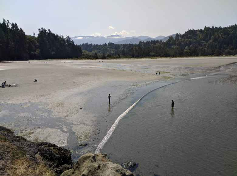 Low tide at Salt Creek County Park.