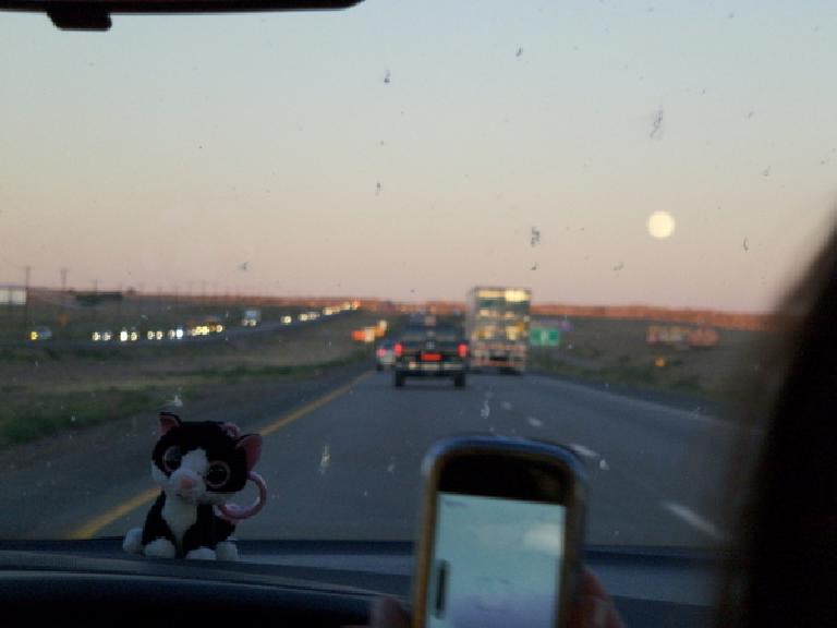 Driving towards Santa Fe and a full moon with Asiatic Wildcat on the dash. (October 11, 2011)