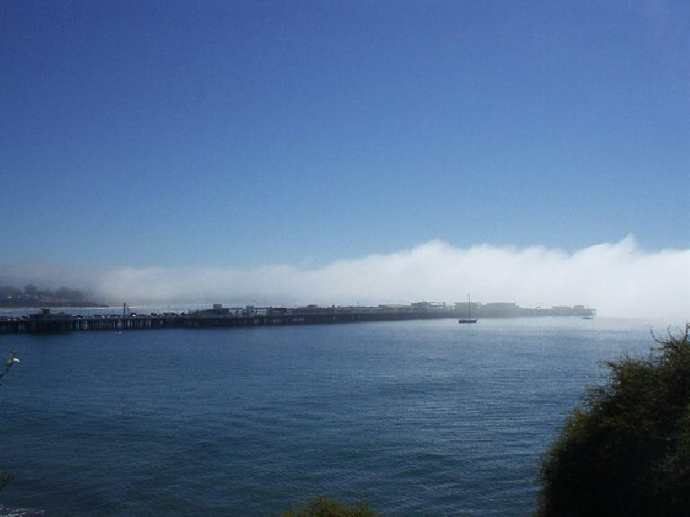 The women had to swim about a mile, out to the edge of this pier and around it off of the Santa Cruz Beach Boardwalk.