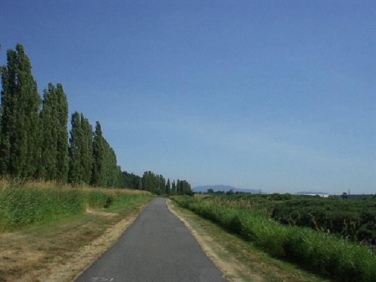 Towards Redmond, the Burke-Gilman trail went by grassy areas and (not shown) several cookie-cutter condos.