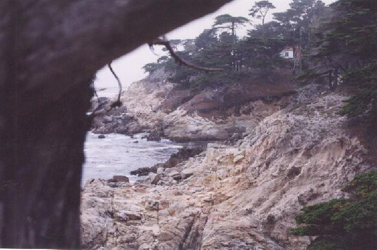 The rocky coast.
