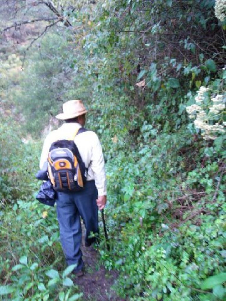 Mauricio -- our Spanish-speaking guide -- helped clear the path using a machete.
