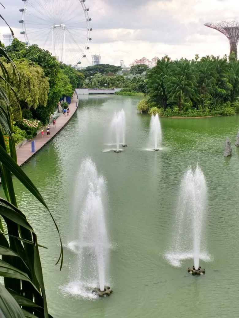 View of fountains at Gardens by the Bay.