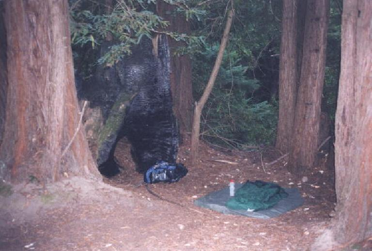 Mile 37: At 7:45pm, I arrive at the Waterman Gap Trail Camp.  The night was so nice that I just slept in my sleeping bag on a ground cloth within a redwood enclave.