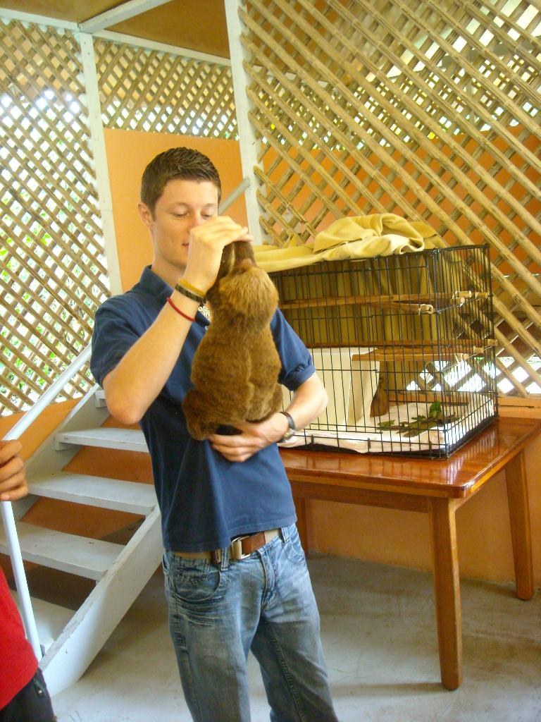 The tour guide with a baby sloth.