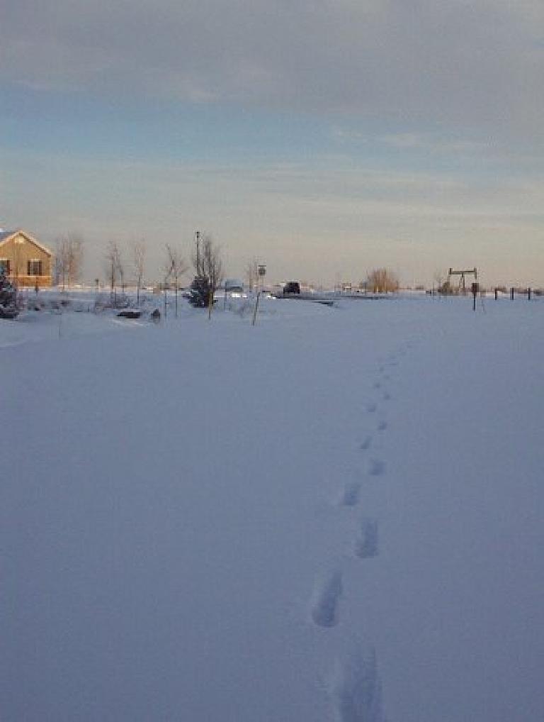 footsteps in deep snow on Hearthfire Recreation Trail