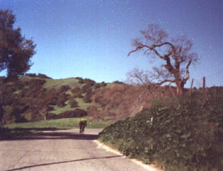bicyclist, green hillsides, Morro Bay, 1999 Solvang Double Century