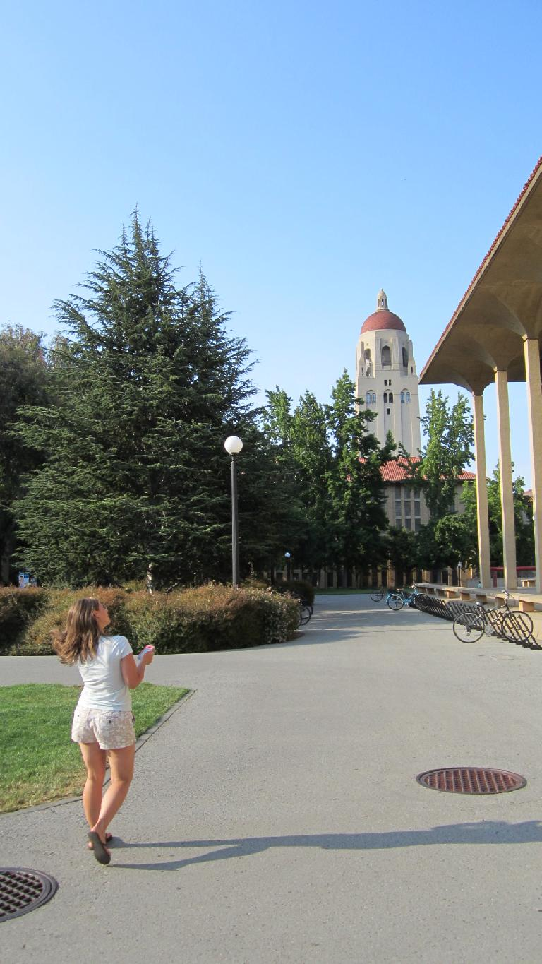 Thumbnail for More Articles About Stanford University