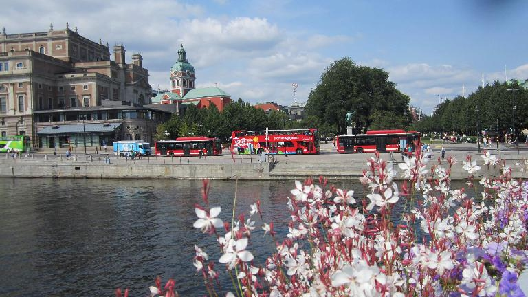 Flowers and tour buses, as seen from the Royal Palace. (July 25, 2013)