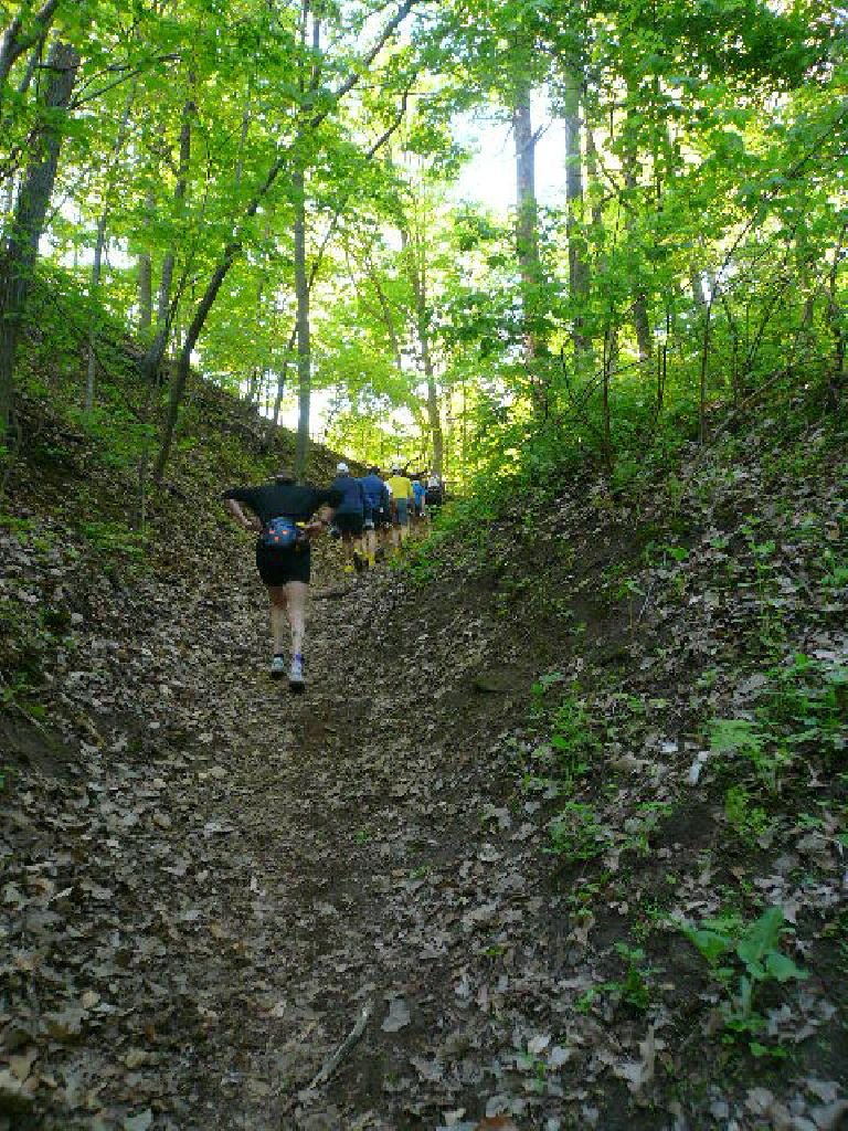 [Mile 11] This climb on the Hilltop Trail was the steepest during the race.  Thank goodness, it still wasn't too long (just a few minutes).