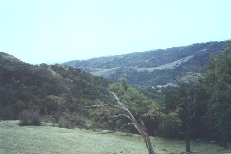 These are some of the views one will see in the Sunol Regional Wilderness on a clear day.  We did the Sunol Loop.