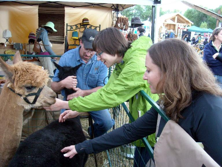 Sarah and Raquel petting the alpacas.